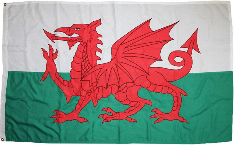 5x3ft 60x36in 152x91cm Welsh Dragon (woven MoD fabric)